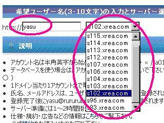 希望ユーザ名の入力とサーバの選択です。